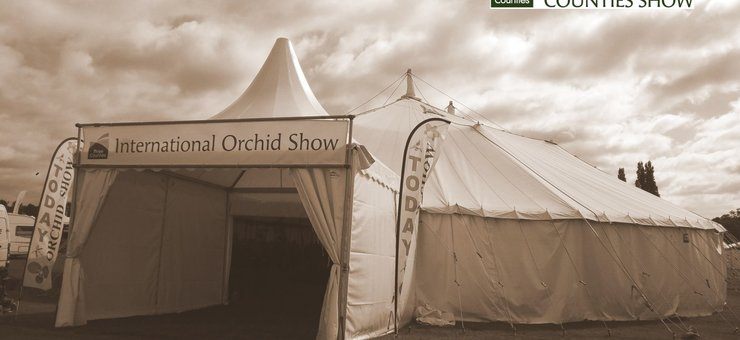 2018 The International Orchid Show at The Royal Three Counties Show, Malvern
